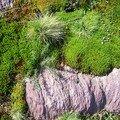 vert fluo sur rose, la mousse