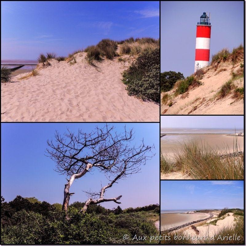Baie de Somme (4)