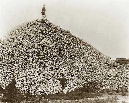 Montagne_de_cr_nes_de_bisons__vers_1870