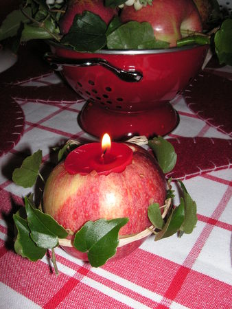 table_pomme_rouge_024