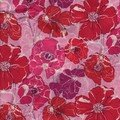 Poppyrose rouge/rose