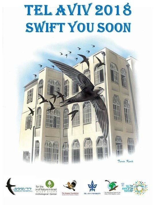 TEL AVIV 2018 - SWIFT YOU SOON