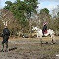 F-Entrainement cross à Verrie - Février 2008