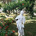 jardin 7MG_2222