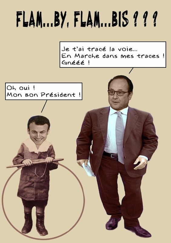 hollande-macron-flamby-flambis
