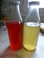 7-kéfir citron et framboise (9)