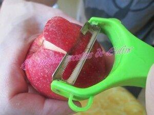 Tartiflette aux pommes et reblochon01