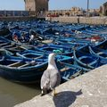 la clebre tour imposante du port d'ESSAOUIRA