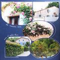 la maison aux roses