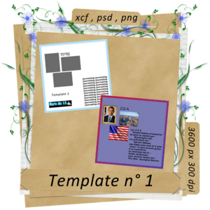 pv_template1_rorodu03