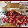 Photophore d automne