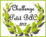 challenge pt bac vert2