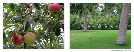 Les_jardins_d_orsan_14_blog