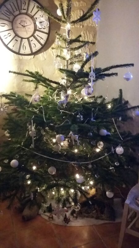 Noël 2015 (3)