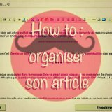 How to organiser son article