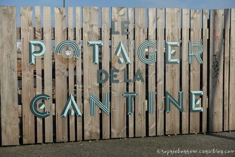 chantiers potager
