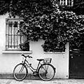 vélo_5709