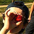 Ramènes ta fraise...