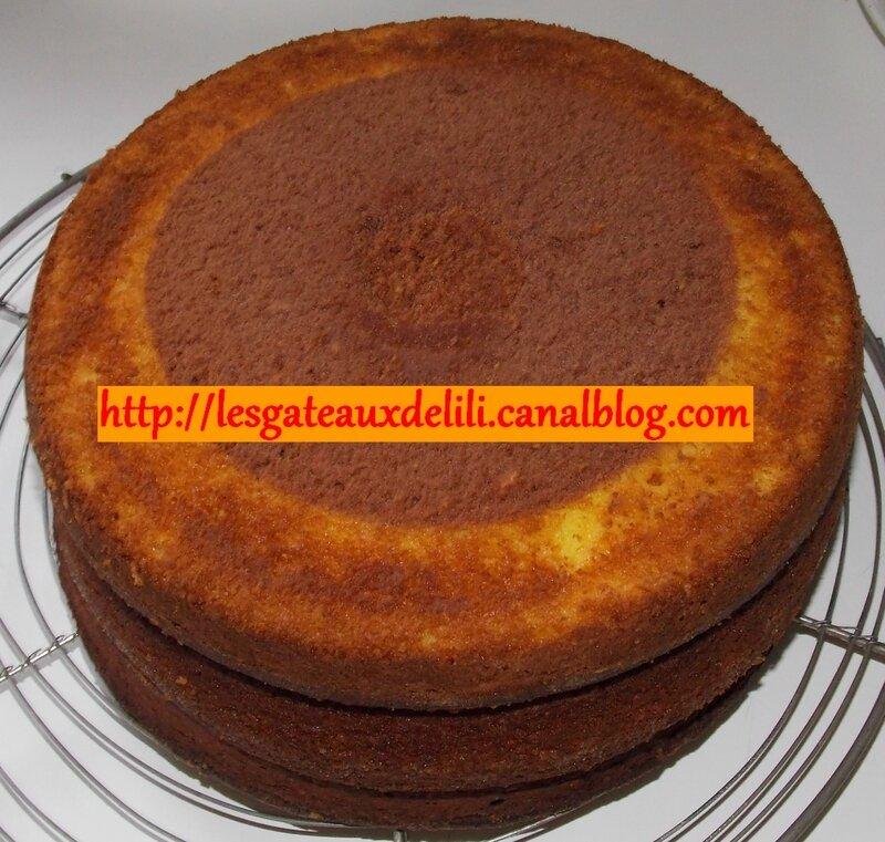2014 05 17 - gâteau damier (13)