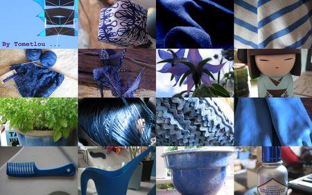 des_bleus
