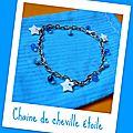 14 - CHAINES DE CHEVILLE