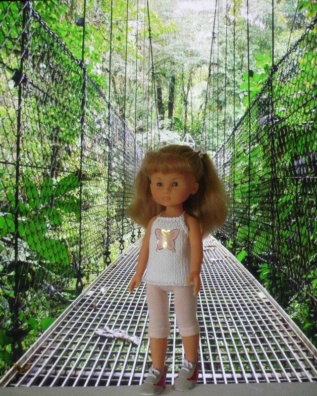 pont suspendu forêt tropicale (1)