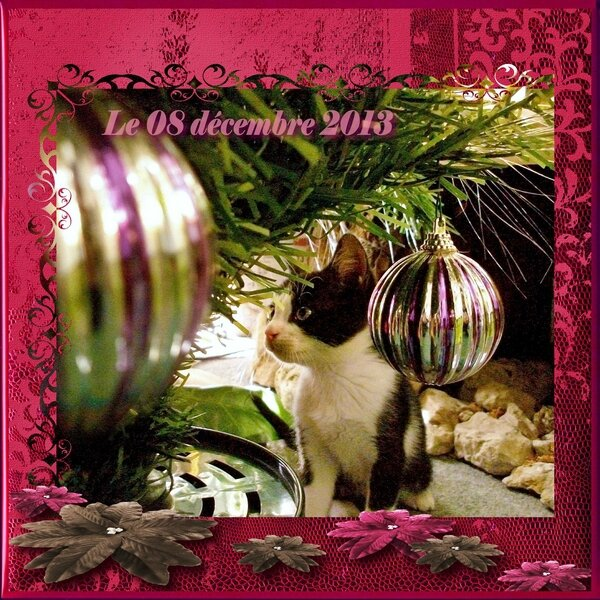 2013-12-08_Olive-sapin_(ADS-Noel2011)_1_web
