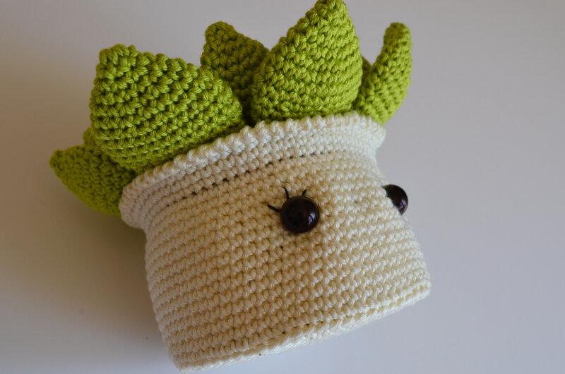 Pikiti la succulente-crochet-amigurumi-la chouette bricole (11)