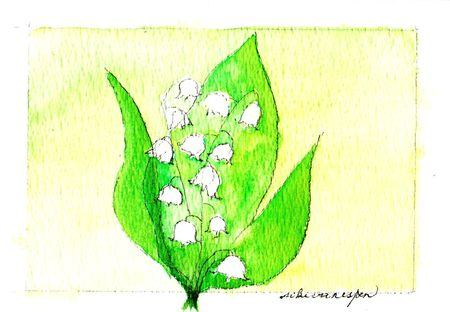 muguet vert