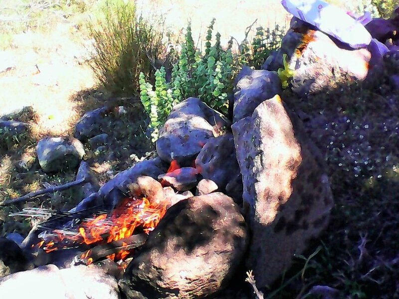 barbecue feu