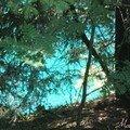 couleur d'eau d'été en montagne
