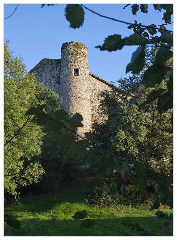 Herisson chateau haie
