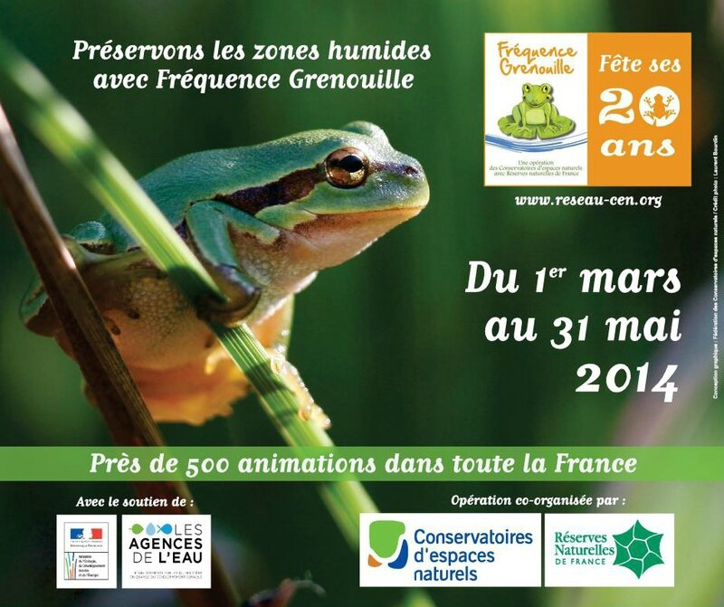 FREQUENCE GRENOUILLE 2014