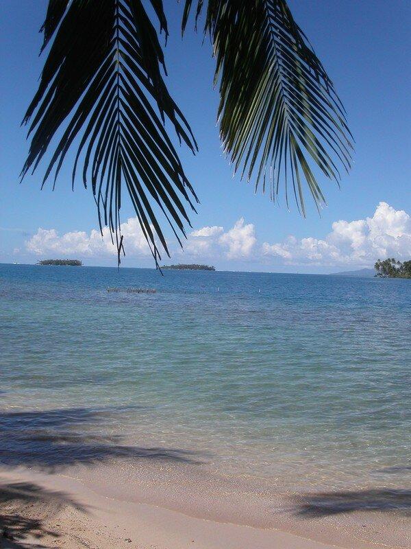 Raiatea au fond, l'île