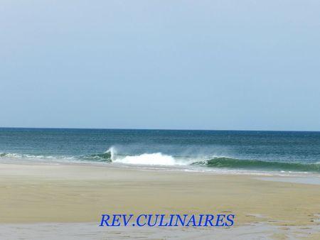 vacances arcachon 2012 020 (2)