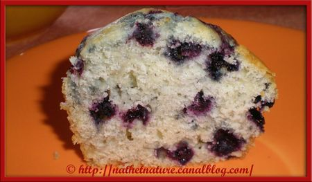 American blueberry muffins - 3