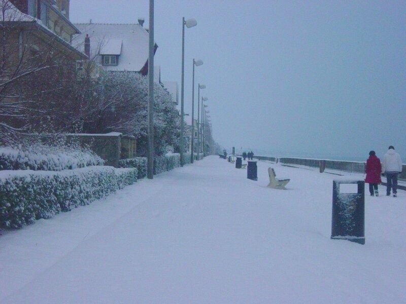 charme en hiver (13)