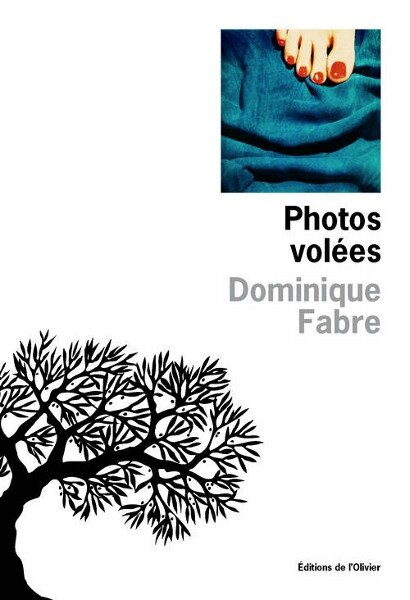 photos-volees-fabre
