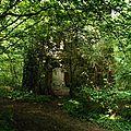 Le moulin du bois de tournebut