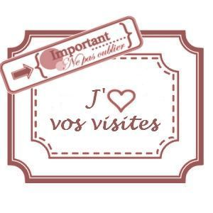 50423110j_aime_vos_visites