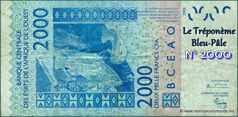 senegal_2000FRANCS