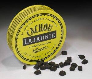 CACHOU_Lajaunie_Toulouse-300x259