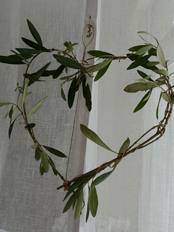 coeur d'olivier