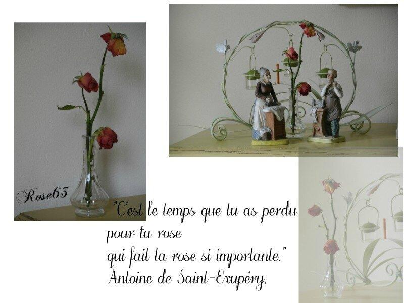 Bouquet séché