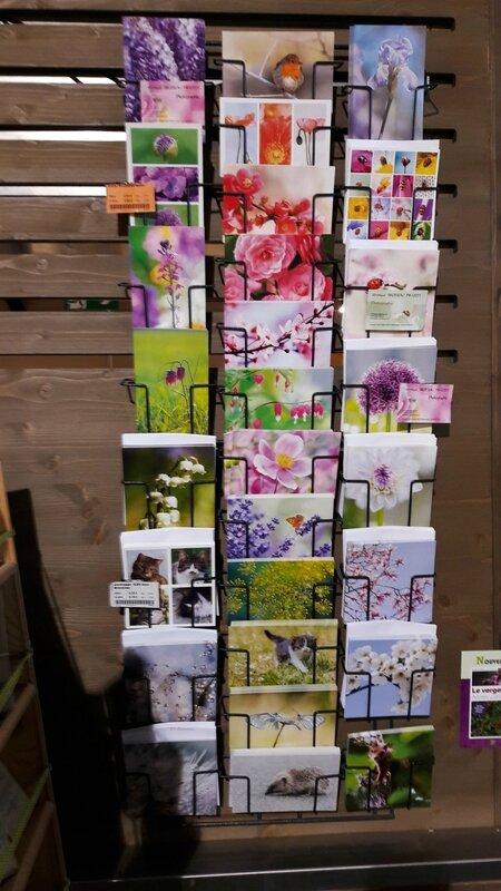 cartes-postales-à-la-CABA-Angers