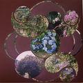 fruits de passiflore et fleurs diverses