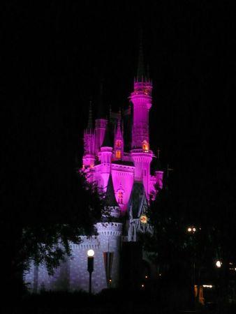 Magic Kingdom 22 Avril (140)