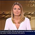 perrinestorme00.2015_12_22_journaldelanuitBFMTV
