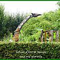 Expo tintin dans les jardins de la saline royale d'arc et senans