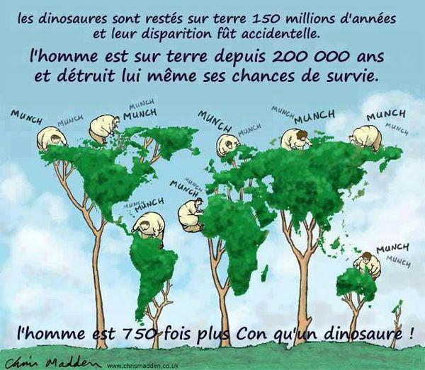 arbre, planète, dinosaures, moutonq FBn